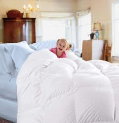 Cuddledown 233TC Down Comforter, Queen, Level 1, White